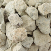 Newstone's Natural Zeolite Rock - Chunks of Large Natural Zeolite Rock , Mined From Japan (0.5kg / 500grams) - Great for Odour Removal in Room, Use in Aquarium to Remove Ammonium