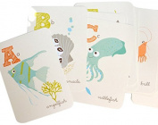 Sea Urchin Studio A to Z Cards, Sea and Shore, 13cm x 18cm
