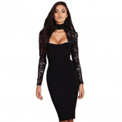 Hot Sale ! Ninasill Exclusive Womens Lace Long Sleeve Choker Dress Beautiful Ladies Formal Cocktail Party Dress Skirt