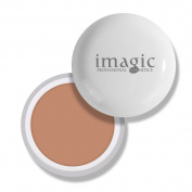 IMAGIC Flawless Face Concealer Cream Oil-Control Scars Freckles Black Eye Full Cover Makeup Face Base Foundation