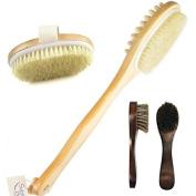 Skin Brush Palooza
