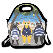 Reusable Picnic Lunch Bags Lunch Tote Cats Summer Holiday Lunch Box For Men Women Adults Kids Toddler Nurses