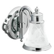 Moen YB9861CH Waterhill Single Globe Bath Light, Chrome