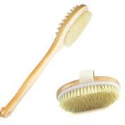 Skin Brush Bundle