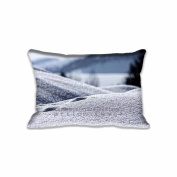 Snow, Close Up Pillow Covers Protector Two Sides Standard Zippered Pillowcase Pillow Sham 16x24inche for kids New Year Gift