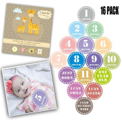 Baby Monthly Stick Dinosaurs First Year Baby Great Shower Gift Milestone Belly stickers for Boys Girls