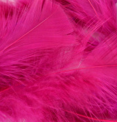Flat Turkey Feathers 14g-Raspberry Sorbet