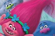 Trolls Hair Movie Poster 34x22