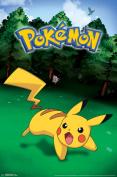 Pokemon Pikachu Catch Video Gaming Poster 22x34