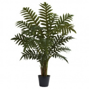 1.1m Evergreen Plant