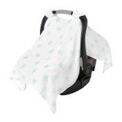 aden by aden + anais car seat canopy, dusty - stars