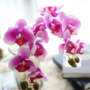 Mynse 4 Pieces Simulation Phalaenopsis Orchid Flowers Wedding Office Home Decor Flowers White and Purple