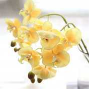 Mynse 4 Pieces Fake Phalaenopsis Orchid Flowers Wedding Office Decoration Flowers Yellow