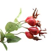 CMrtew Fake Artificial Fruit Pomegranate Berries Bouquet Floral Garden Halloween Christmas Decor