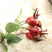 Mynse 5 Pieces Home Decor Artificial Flowers Rose Fruit Fake Pomegranate Fruit Red