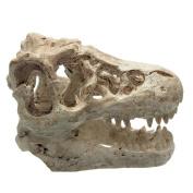 Anndeeson Aquarium Terrarium Ornament Crocodile Skull Model Fish Tank Decor