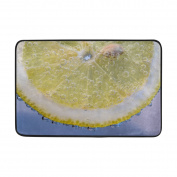 Aideess - Polyester Door Mats Outside Doormat, Lemon Slices Bubbles Doormats for Entrance Way Outdoors 60cm x 40cm