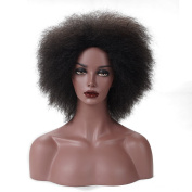 Coco Kinky Curly Afro Wigs Synthetic Kanekalon Wig For Black Women Short Womens Black Natural Wigs