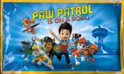 Nickelodeon Paw Patrol Ice Pack