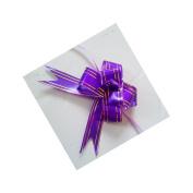 Jesica Ribbon Large Bowknot Gift Party Decor