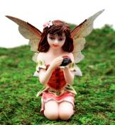 Ebros Gift Enchanted Fairy Garden Kneeling Fairy Holding Ladybug Figurine 8.3cm H Miniature Do It Yourself Ideas For Your Home Enchanted Fairy Garden