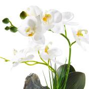 Artificial Phaleanopsis Arrangement with Vase Decorative Orchid Flower Bonsai Rockery Series