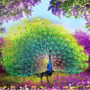 Alonea DIY 5D Diamond Peacock Embroidery Painting Flower Cross Stitch Home Decoration