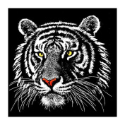 DEESEE(TM) 5D Animal Diamond Rhinestone Pasted Embroidery Painting Cross Stitch Home Decor (A