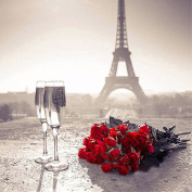 TianMai Hot New DIY 5D Diamond Painting Kit Crystals Diamond Embroidery Rhinestone Painting Pasted Paint By Number Kits Stitch Craft Kit Home Decor Wall Sticker - Eiffel Tower Wine Rose, 30x30cm