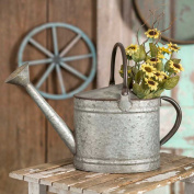 Rustic Oval Watering Pitcher