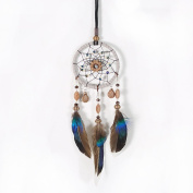 YGMONER Dream Catcher Handmade Car Interior Rearview Mirror Dangle 7.1cm Diameter and 30cm Long