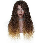 AisiBeauty Heat Resistant Fibre Hair Afro Kinky Curly Two Tone Ombre Brown Blonde Wig Women Girls Synthetic Mix Colour Long Fluffy Wigs for African American Women