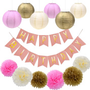 Babite Happy Birthday Banner Tissue Paper Pom Poms Paper Flowers Paper Lantern Hanging Flower Ball Party Decor Kit for Birthday Party Decorations