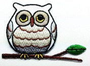 Owl Cartoon Patch Embroidered Iron on Hat Jacket Hoodie Backpack Ideal for Gift /7.2cm(w) X 5cm