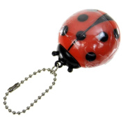 Ladybug Lip Gloss With Chain