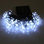 Ladaidra String Solar Lights, 50 LED Peach Blossom Lamp, 7M Plastic Rechargeable Waterproof Portable Outdoor Flower Decor for Garden Wedding Festivel Xmas Party