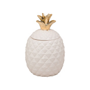 10 Strawberry Street Porcelain Pineapple 3.1l Canister/Cookie Jar, White/Gold