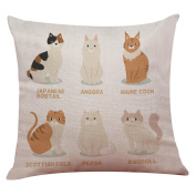 """CAT BREEDS"" Cute Cat Square 43cm Woaills Sofa Bed Home Decoration Festival Pillow Case Cushion Cover"