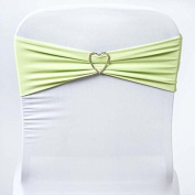 Tableclothsfactory 5pc x SEXY Spandex Chair Sash - Tea Green