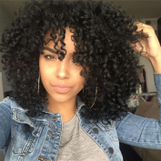 Top Hair Synthetic Afro Curly Hair Wig For Black Women Short Kinky Hair Jerry Curly Resistance Fibre Natural Black 1b Synthetic Wig