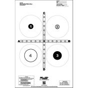 Tetreau Training Target use for indoor, single lane ranges Black & Grey Size