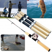 Fly Fishing Rods Woopower Protable 0.75M Hard Spinning Tackle Feeder Peche Supplies Fishing Equipment with Fishing reel