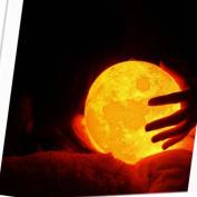 LED Light ,Lavany® 3D USB LED Magical Moon Night Light Moonlight Table Desk Moon Lamp Gift