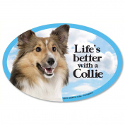 Prismatix Collie Magnet