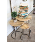 Kalalou Nesting Iron Accent Tables with Mango Wood Tops, Set of Three