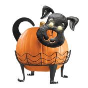 Dog Pumpkin Holder with Light-up Eyes