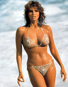Raquel Welch Bikini Photo Pinup Art Hollywood Legends Photos Artwork 8x10