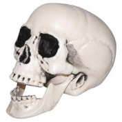 Set of 3 Spooky Decorative Skulls! Perfect for Your Next Halloween Gathering!