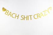 LOVELY BITON™ Gold Bach Shit Crazy Letters Banner Decoration Kit Themed Party Banner for Birthday Wedding Showers Photo Props Window Decor