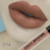 Kanzd Fashion Sexy Liquid Lipstick Moisturiser Velvet Lipstick Cosmetic Beauty Makeup Lip Gloss Lipstick Waterproof Long Lasting